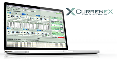 Forex multi account manager software