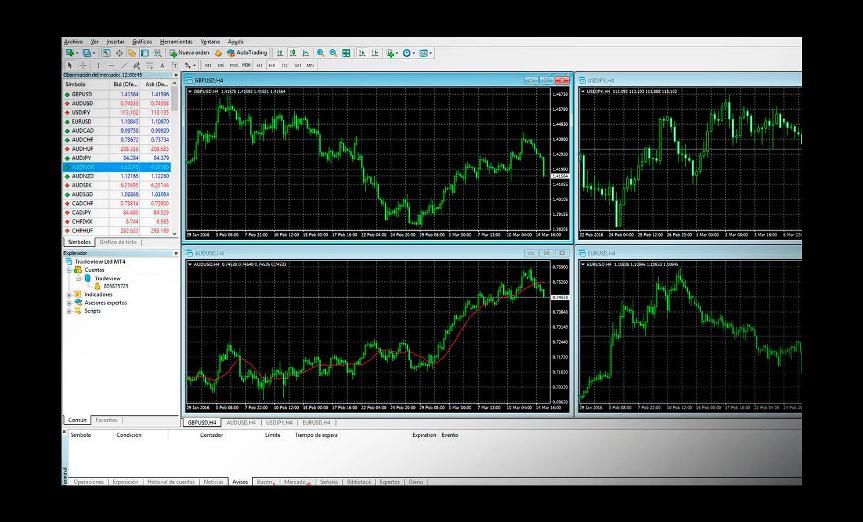 Metatrader4 Platform | Tradeview