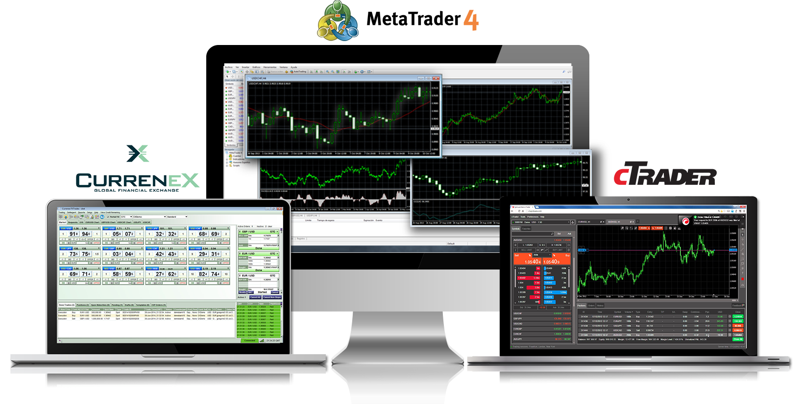 Free forex scanning software
